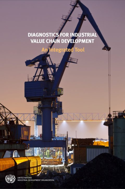Diagnostic for industrial value chain development