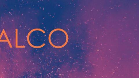 Economic and Social Impact of BALCO